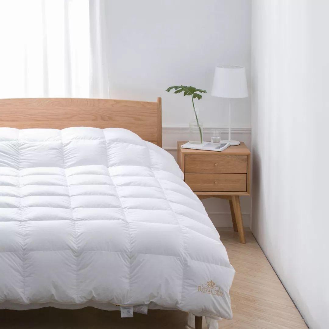 拼团丨德国老牌鹅绒被,95%白鹅绒,又轻又暖,能机洗烘干