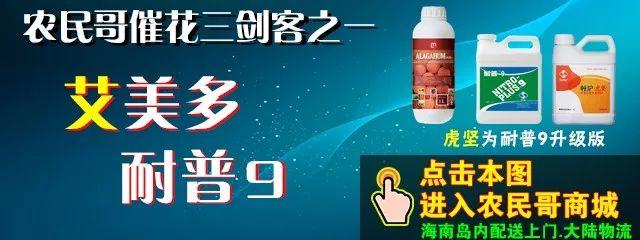 【行情播报】越南金煌高达9.5元,海南台农略降